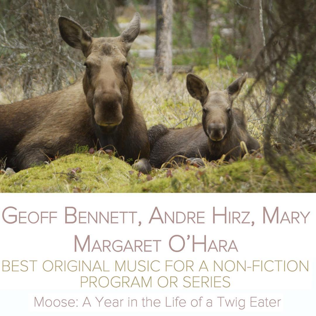"""SCGC member Geoff Bennett has been nominated for a Canadian Screen Award in the category of """"Best Original Music for a Non-Fiction Program or Series"""" alongside co-writers Mary Margaret O'Hara and Andre Hirz! Their nominated score is for the """"Moose: A Year in the Life of a Twig Eater""""! Congratulations"""
